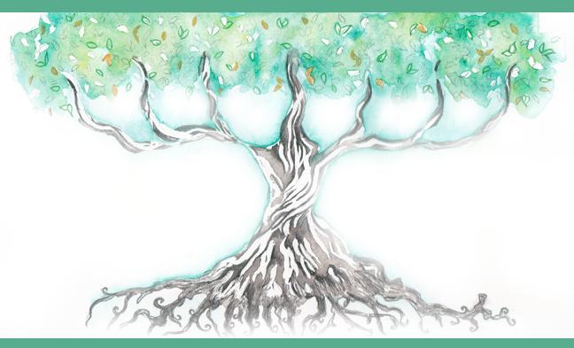 Rediffusion – Méditation de l'arbre.
